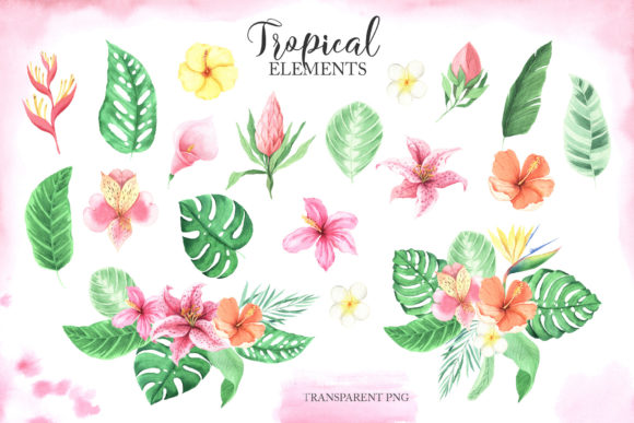 Watercolor Tropical Animals Clipart Graphic Design
