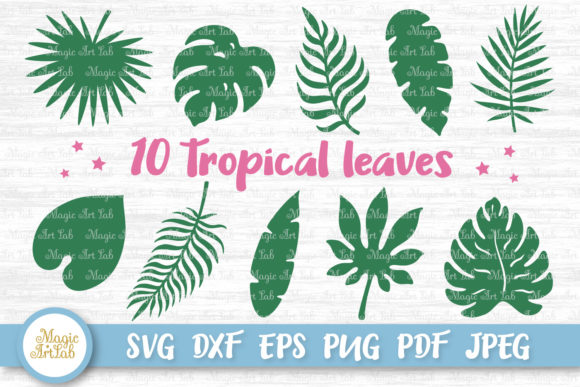 Download Free 10 Tropical Leaves Graphic By Magicartlab Creative Fabrica for Cricut Explore, Silhouette and other cutting machines.