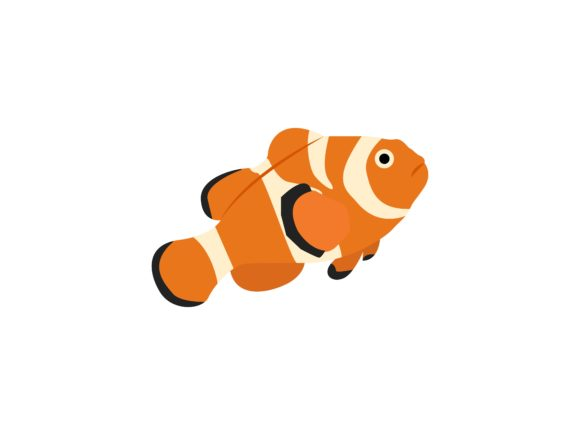 Clown Fish Animal Graphic By Archshape Creative Fabrica