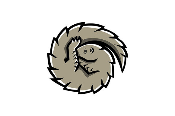 Download Free Pangolin Scaly Anteater Curled Mascot Graphic By Patrimonio SVG Cut Files