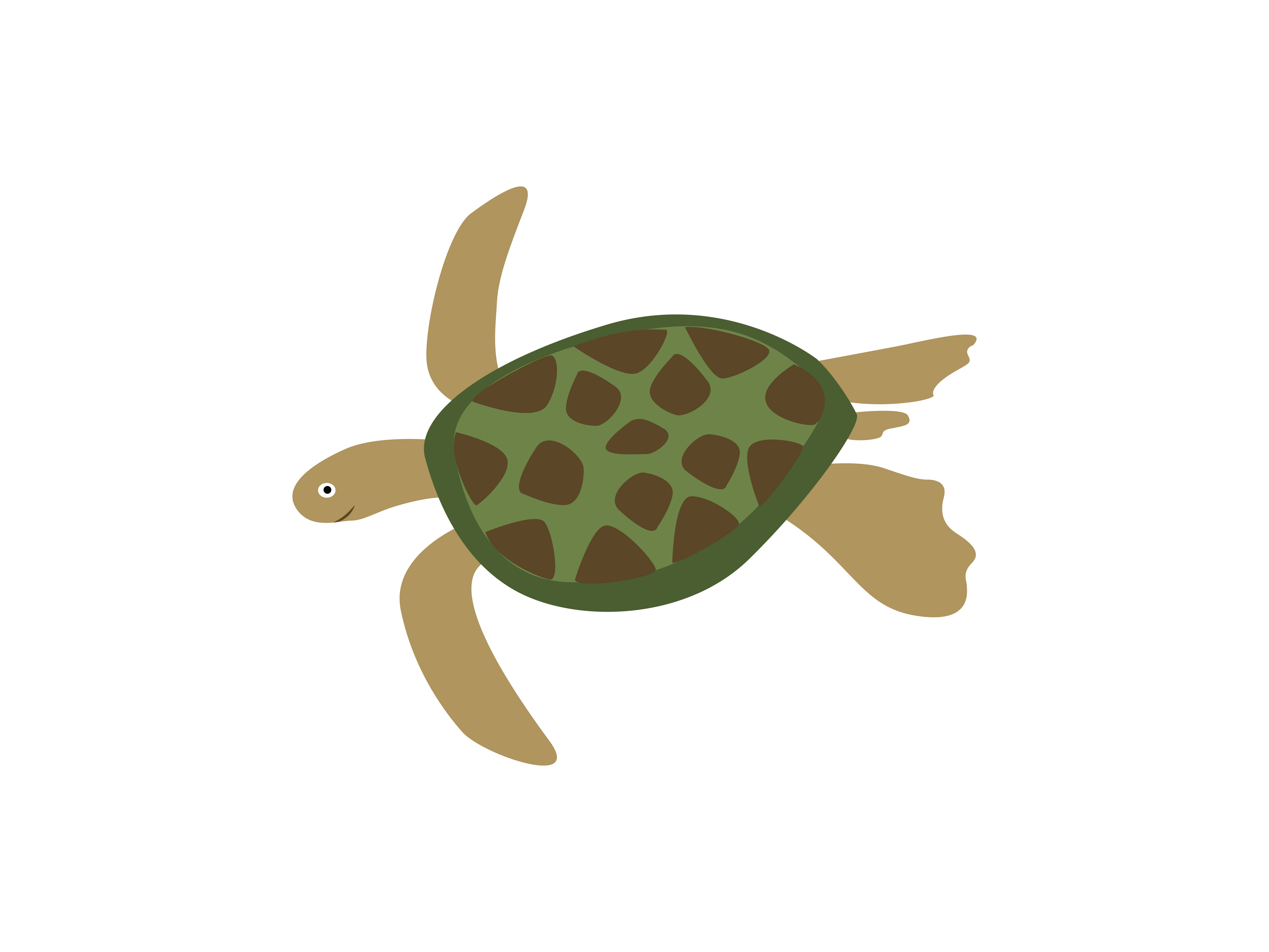 Download Free Turtle Animal Grafico Por Archshape Creative Fabrica for Cricut Explore, Silhouette and other cutting machines.