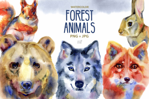 Forest Animals Clipart Graphic Illustrations By NataliMyaStore