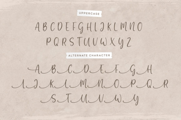 Print on Demand: Gratefully Script & Handwritten Font By Wandery Supply - Image 13