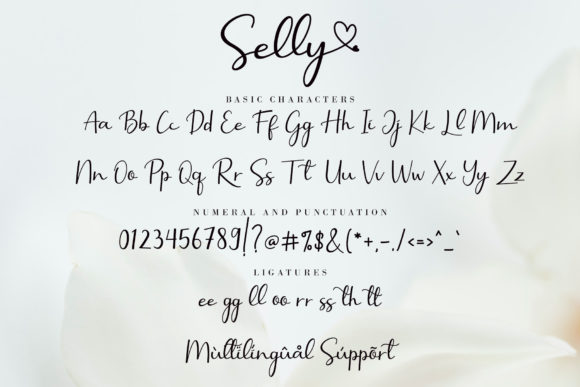 Print on Demand: Selly  Script & Handwritten Font By AEN Creative Studio - Image 11