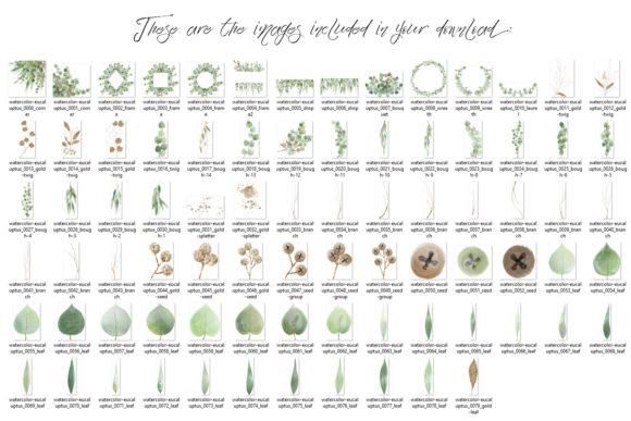 Print on Demand: Watercolor and Gold Eucalyptus Clipart Graphic Illustrations By Digital Curio - Image 9