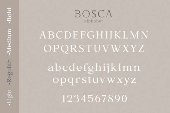 Print on Demand: Bosca Serif Font By Pasha Larin - Image 12