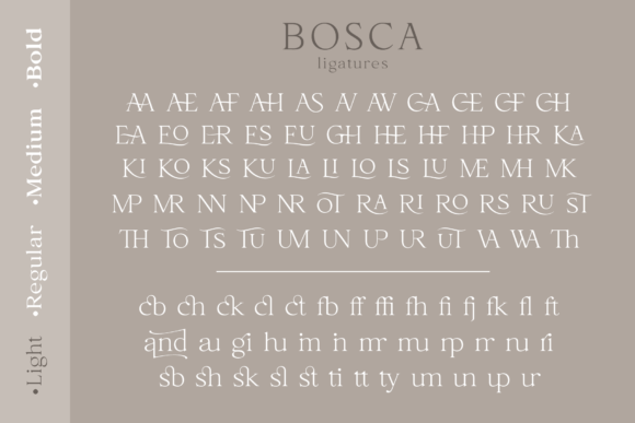 Print on Demand: Bosca Serif Font By Pasha Larin - Image 13