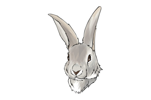 Download Free Rabbit Head Ilustration Graphic By Rfg Creative Fabrica for Cricut Explore, Silhouette and other cutting machines.