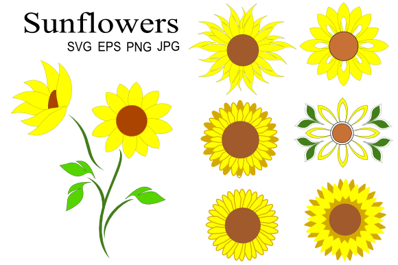 Download Free 1 Sunflower Blooms Designs Graphics for Cricut Explore, Silhouette and other cutting machines.
