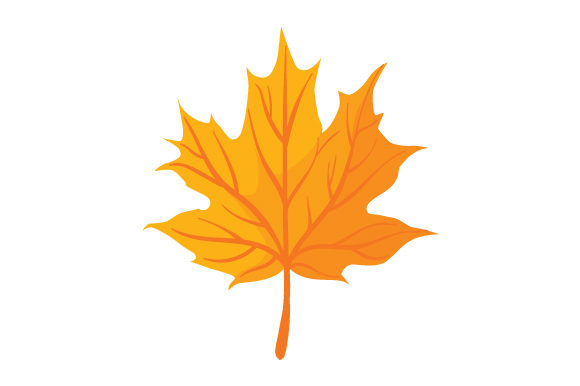 Download Free Maple Leaf Svg Cut File By Creative Fabrica Crafts Creative for Cricut Explore, Silhouette and other cutting machines.