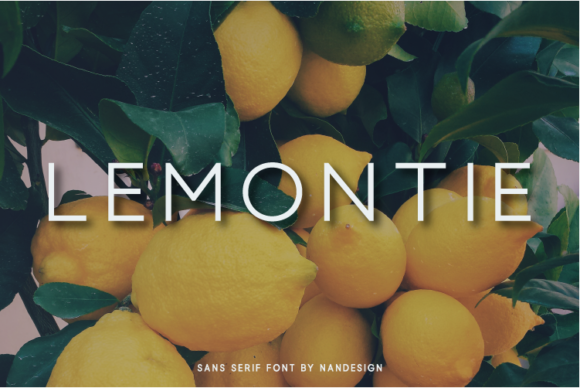 Print on Demand: Lemontie Sans Serif Font By Nan Design