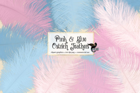 Print on Demand: Pink and Blue Ostrich Feathers Clipart Gráfico Objetos Por Digital Curio