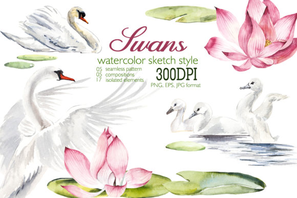 Watercolor Swans Graphic Illustrations By Мария Кутузова