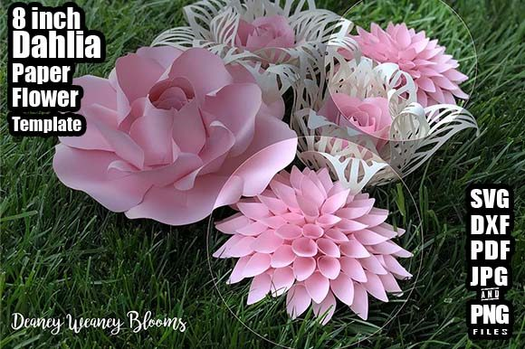 8 Inch Dahlia Paper Flower Template Graphic By