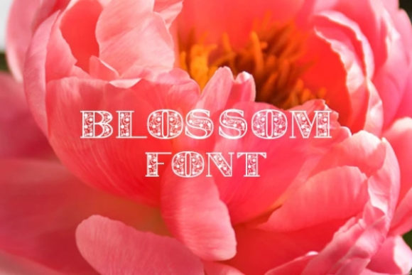 Print on Demand: Blossom Display Font By carina2 - Image 1
