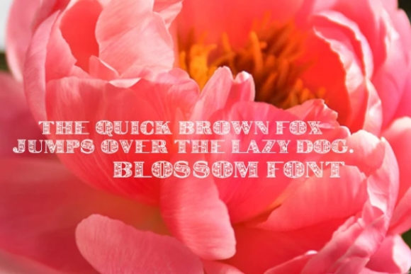 Print on Demand: Blossom Display Font By carina2 - Image 2