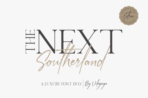Print on Demand: The Next Southerland Serif Font By Vilogsign - Image 1