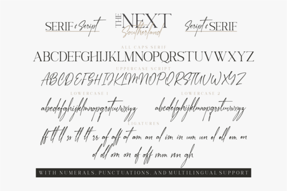 Print on Demand: The Next Southerland Serif Font By Vilogsign - Image 14