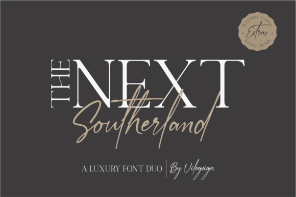 Print on Demand: The Next Southerland Serif Font By Vilogsign - Image 16