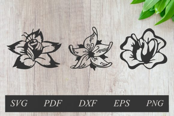 Download Free Three Flower Set Hand Drawn Graphic By Rizuki Store Creative for Cricut Explore, Silhouette and other cutting machines.