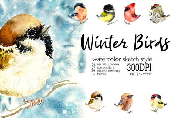 Watercolor Winter Birds Set Grafik Illustrationen von Мария Кутузова
