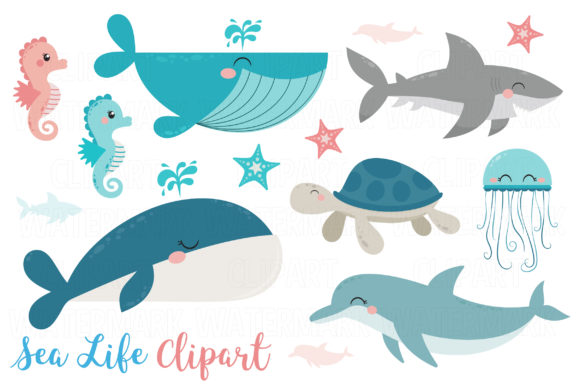 Whales, Dolphin and Sea Life Clipart Graphic Illustrations By magreenhouse