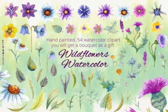 Print on Demand: Wildflowers. Watercolor Clipart Graphic Illustrations By Natika_art