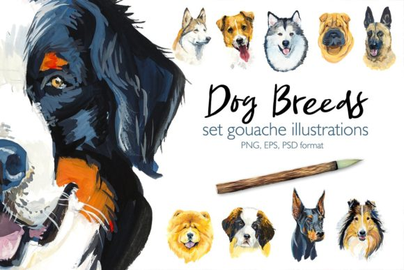 Dog Breeds Set 2 Graphic Illustrations By Мария Кутузова