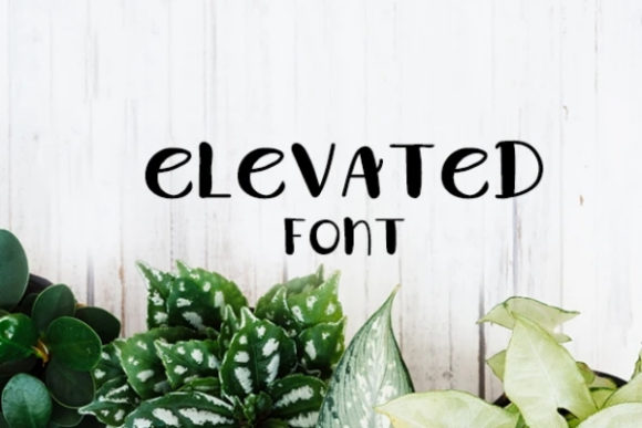 Print on Demand: Elevated Display Font By carina2