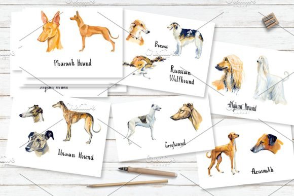 Hounds. Gouache Cliparts Graphic Illustrations By Мария Кутузова - Image 5