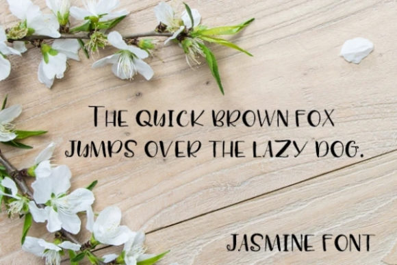 Print on Demand: Jasmine Display Font By carina2 - Image 2