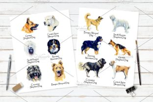 Sherphed Dogs Cliparts Graphic Illustrations By Мария Кутузова 4