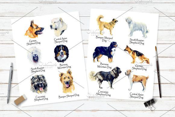 Sherphed Dogs Cliparts Graphic Illustrations By Мария Кутузова - Image 4