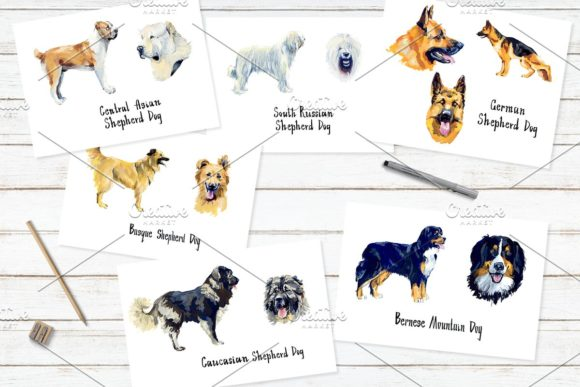 Sherphed Dogs Cliparts Graphic Illustrations By Мария Кутузова - Image 5