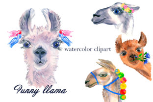 Print on Demand: Watercolor Lama Clipart Graphic Illustrations By ElenaZlataArt 1
