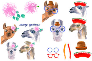 Print on Demand: Watercolor Lama Clipart Graphic Illustrations By ElenaZlataArt 3