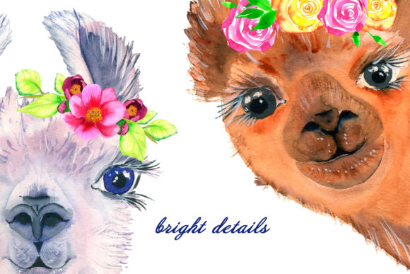 Watercolor Lama Clipart Graphic Illustrations By ElenaZlataArt - Image 5