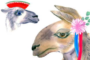 Print on Demand: Watercolor Lama Clipart Graphic Illustrations By ElenaZlataArt 6