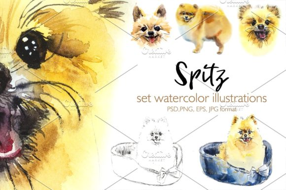 Watercolor Spitz-dog Graphic Illustrations By Мария Кутузова