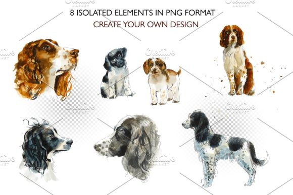 Watercolor Springer Spaniels Graphic Illustrations By Мария Кутузова - Image 2