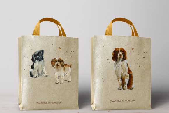 Watercolor Springer Spaniels Graphic Illustrations By Мария Кутузова - Image 5