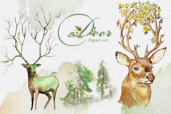 Watercolor Deer Clipart Set Graphic Illustrations By artcreationsdesign