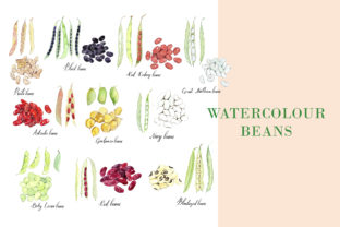 Watercolour Beans Illustration Graphic Illustrations By Primafox Design 1