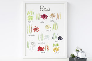 Watercolour Beans Illustration Graphic Illustrations By Primafox Design 3