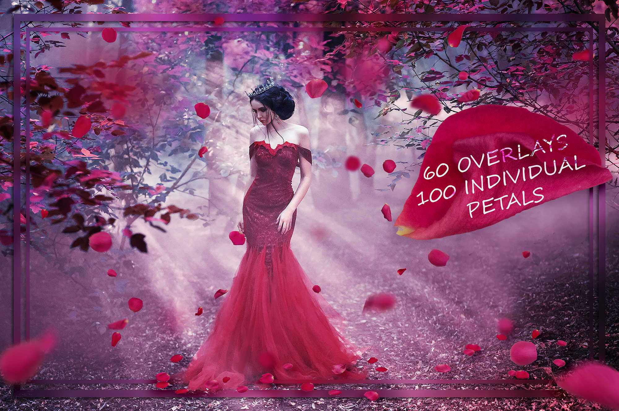 Download Free Pink Petals Overlays Graphic By Faerydesign Creative Fabrica SVG Cut Files