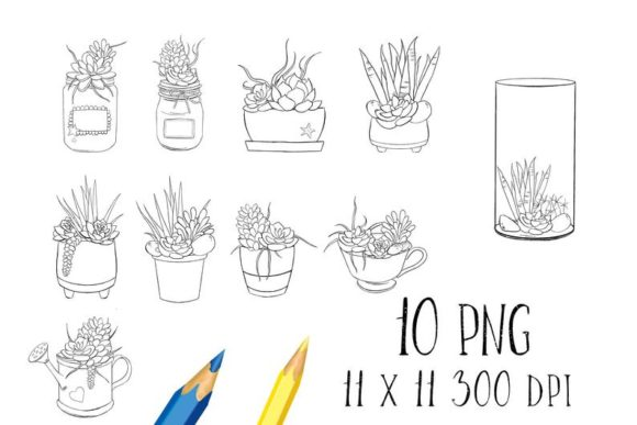 Download Free Succulents Coloring Pages Graphic By Snail S Tales Creative for Cricut Explore, Silhouette and other cutting machines.