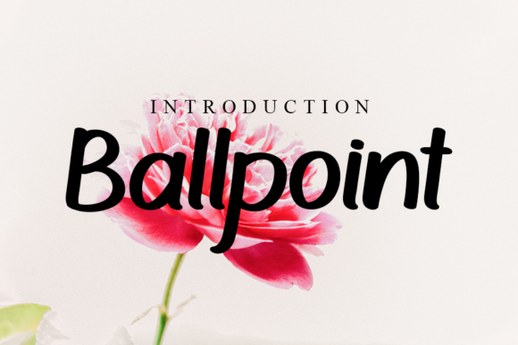 Print on Demand: Ballpoint Script & Handwritten Font By Inermedia STUDIO