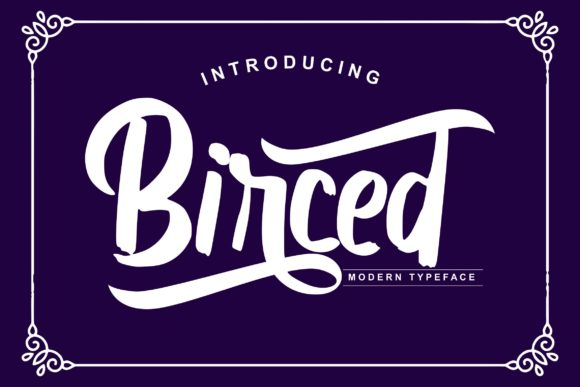 Print on Demand: Birced Script & Handwritten Font By Vunira