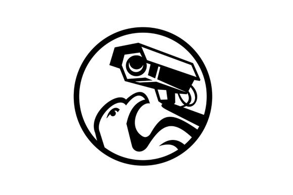 Download Free Eagle And Security Surveillance Camera Graphic By Patrimonio for Cricut Explore, Silhouette and other cutting machines.