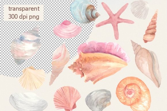 Print on Demand: Pastel Seashells Watercolor Clipart Set Graphic Illustrations By roselocket - Image 2